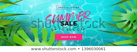 Lata summertime sprzedaży banner promo etykiety Zdjęcia stock © robuart