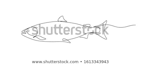 Stock photo: Fish single icon.