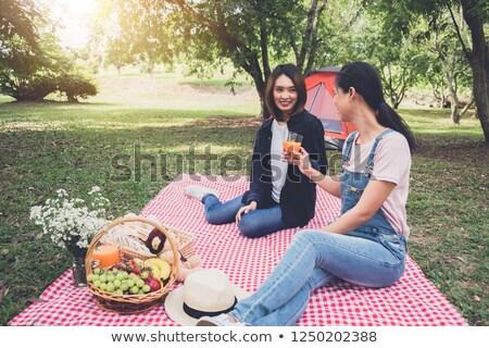 paar · vergadering · picknicktafel · samen · natuur · zomer - stockfoto © freedomz