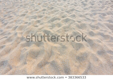 Tires on the tropical sandy beach Stock photo © boggy