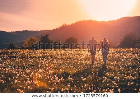 家族 カップル 連帯感 フィールド 花 自然 ストックフォト © ElenaBatkova