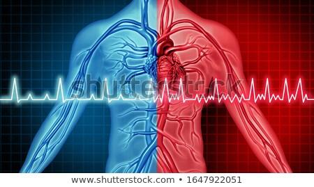 Atrial Fibrillation Disorder Stock photo © Lightsource