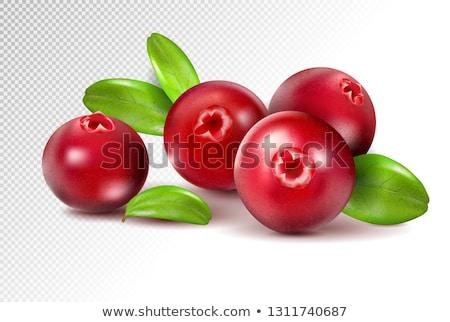 Kızılcık tıp kırmızı beyaz nesne Stok fotoğraf © Dionisvera