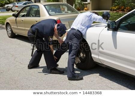 aquila · polizia · auto · ubriaco · driver · strada - foto d'archivio © lisafx