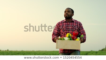 Farmer posing in his field Stock photo © photography33