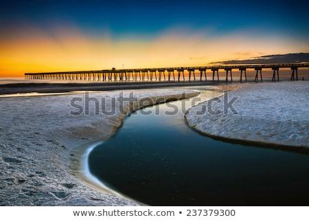 shoreline of panama city beach at sunset stock photo © dacasdo