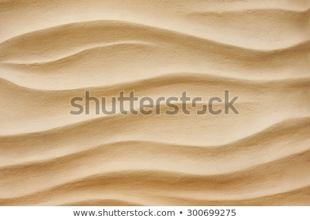 A rippled sand dune Stock photo © elxeneize