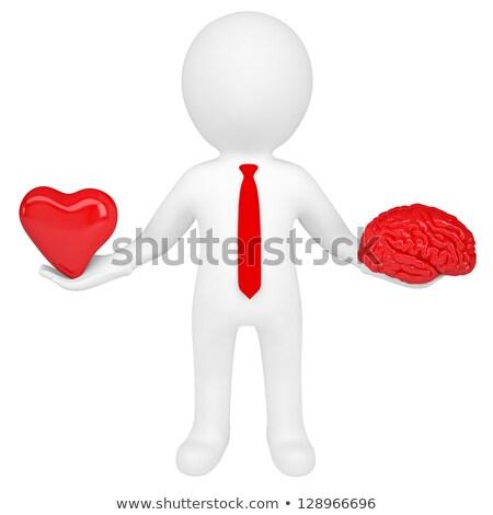 3d человек сердце мозг изолированный оказывать Сток-фото © cherezoff