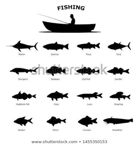 Silhouette of fish contour drawing Stock photo © LoopAll