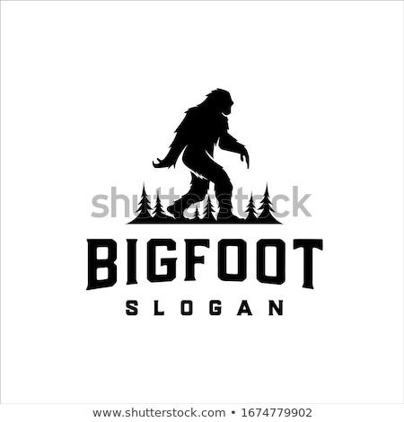bigfoot Stock photo © perysty