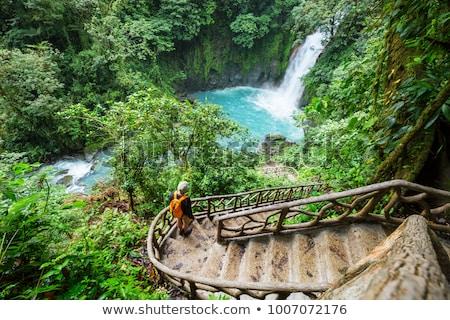 Lago forestales Costa Rica árbol naturaleza paisaje Foto stock © bmonteny