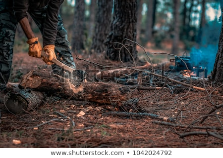 Stock photo: Old axe hit on a wood chopping block