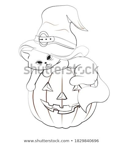 クモ 魔女の帽子 実例 秋 休日 昆虫 ストックフォト © adrenalina