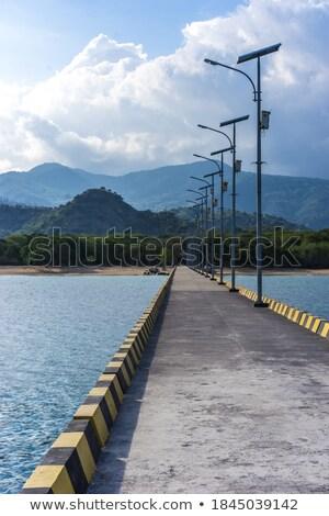 桟橋 オープン 海景 木製 広い 海 ストックフォト © stevanovicigor