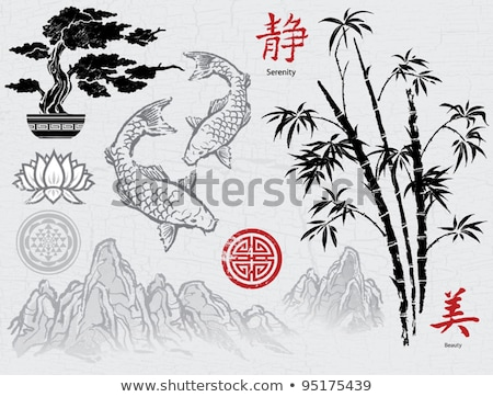 chinese calligraphy symbol for water element stock photo © kentoh