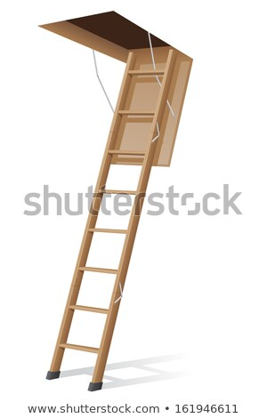 Ladder In Hatch Stock photo © cosma