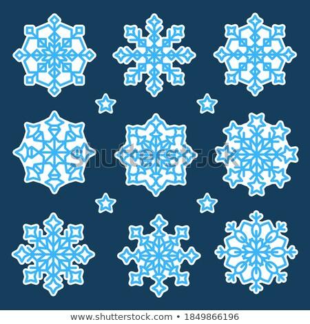 Floco de neve variação dezesseis azul diferente próprio Foto stock © nicemonkey