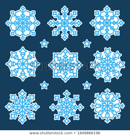 snowflake variation Stock photo © nicemonkey