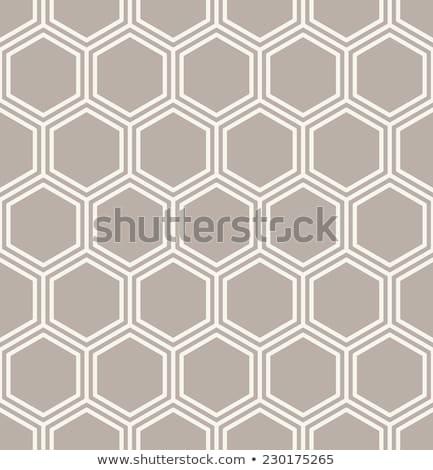 Semleges végtelenített lineáris geometrikus minta minta mértani Stock fotó © almagami