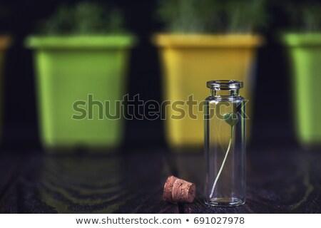 завода биотехнология будущем продовольствие зеленый медицина Сток-фото © olira