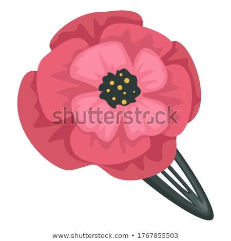 tavasz · virágzó · ág · rózsaszín · virágok · virágzó - stock fotó © guffoto