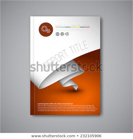 Profi üzlet brosúra könyvborító design sablon absztrakt Stock fotó © SArts