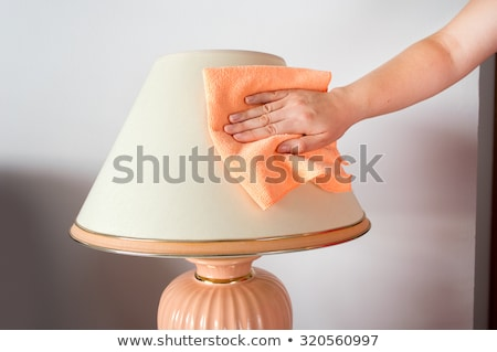 Housemaid Cleaning Lamp Stock photo © AndreyPopov