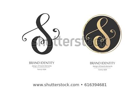 black vector set letter s logo collection Stock photo © blaskorizov