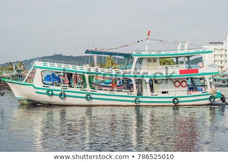 Csoport színes hajók Vietnam ikonikus vízpart Stock fotó © galitskaya