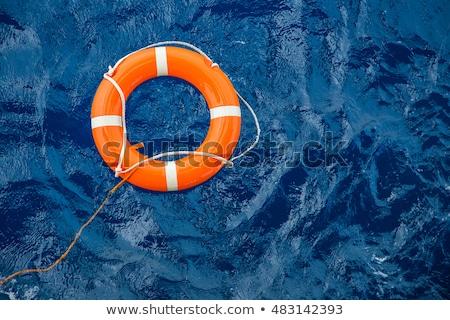 Zee 3d illustration water Blauw Rood leven Stockfoto © make