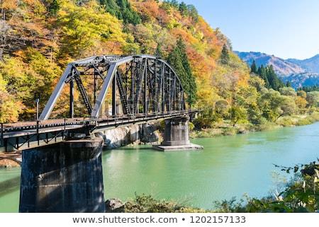 ősz ősz lomb első híd kilátás Stock fotó © vichie81