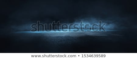 A Scary Dark Night Scene stock photo © colematt
