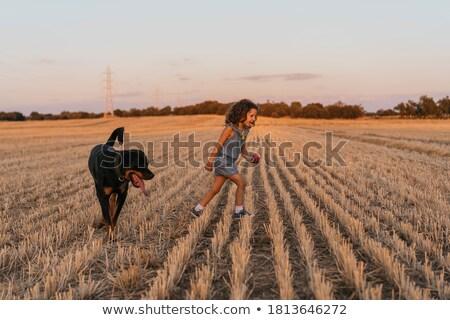 Jonge blond meisje spelen zonlicht velden Stockfoto © ElenaBatkova