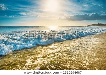Beach with surf waves and Maspalomas lighthouse on background Stock photo © vapi