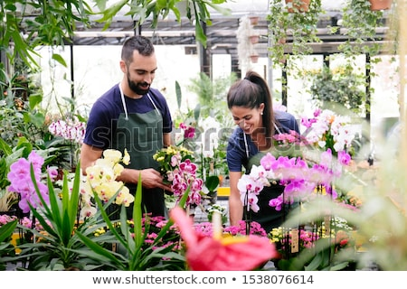 Teamwork With Happy Co-workers At Work In Florist Shop Stock photo © diego_cervo