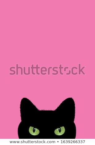 Ontwerp goede posters groet Stockfoto © Zsuskaa
