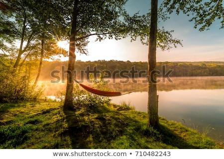 Alpesi nyár tó kilátás gyönyörű Ausztria Stock fotó © wildman