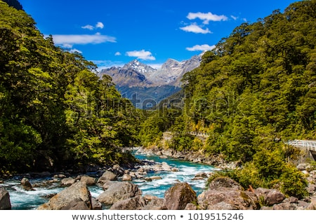 milford track stock photo © thp