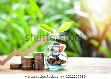 Penny permanente verandering shot witte Stockfoto © macropixel