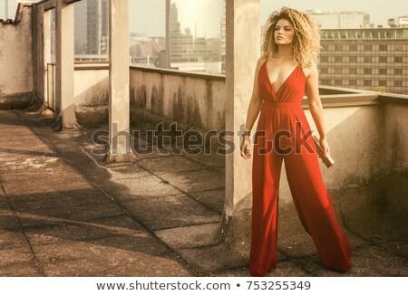 ayakta · güzel · kibirli · kadın · genç · güzel · kadın - stok fotoğraf © gromovataya