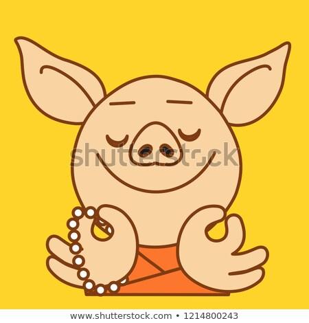 Tibetan pig Stock photo © raywoo