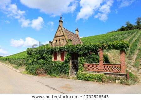 Plantação casa diferente jardim fazenda vermelho Foto stock © ruzanna