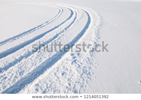 Traces at Snow Stock photo © Kirschner