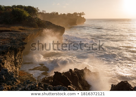 Powerful spray from a crashing wave Stock photo © jrstock