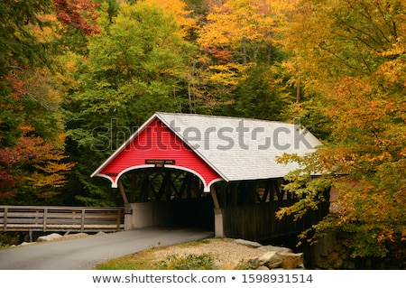 Old bridge  in autumn landscape Stock photo © Nejron