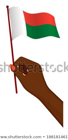 Madagascar Small Flag on a Map Background. Stock photo © tashatuvango