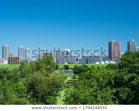 cityscape of riverbank Stock photo © elwynn