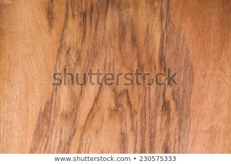 realista · madeira · interessante · crescimento · anéis · exótico - foto stock © capturelight
