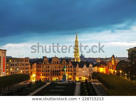 Brüsszel Belgium este épület sziluett gótikus Stock fotó © AndreyKr