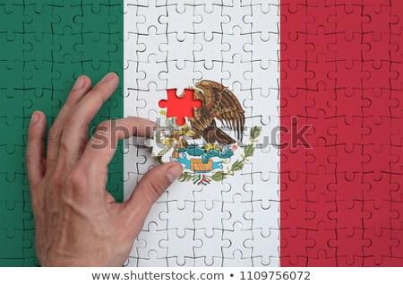 Politics word on puzzle in man hands Stock photo © fuzzbones0